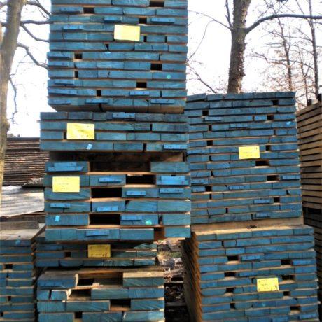 legnolocalepinerolese-castagno