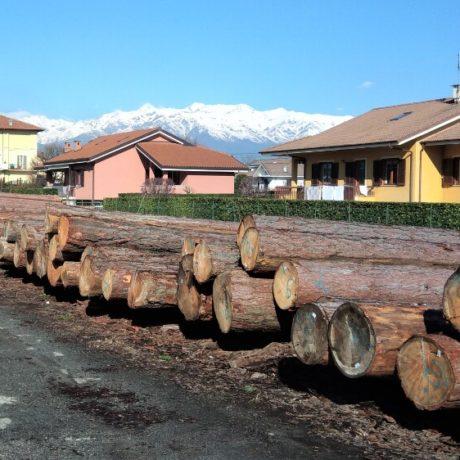 legnolocalepinerolese-larice