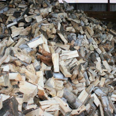 legnolocalepinerolese-legna2