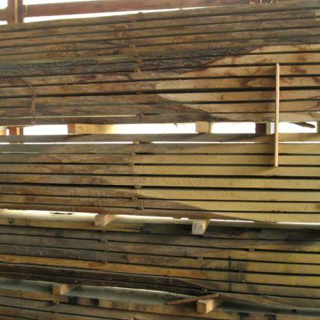legnolocalepinerolese-rovere