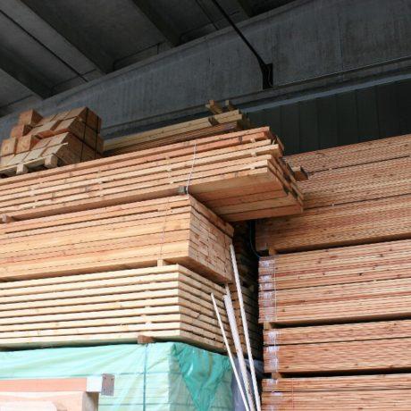 legnolocalepinerolese-segati conifera 2