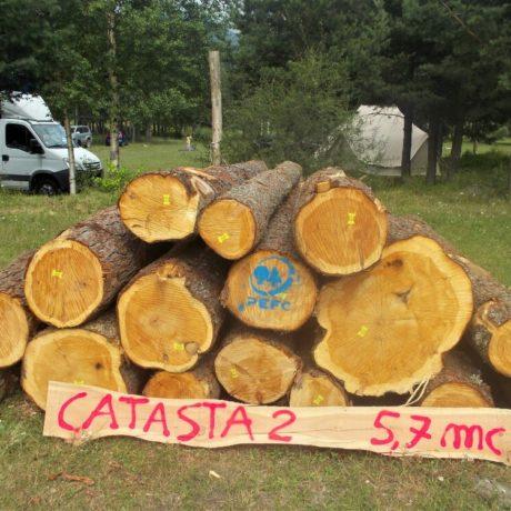 legnolocalepinerolese-tondo6